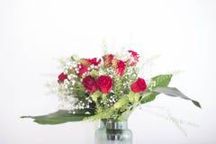 Kwitnie bukiet czerwone róże na białym tle Zdjęcie Stock