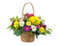 Kwitnie bukiet od wielo- barwionej chryzantemy i inny kwiat Zdjęcia Stock