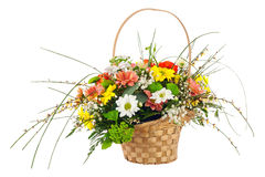 Kwitnie bukiet od wielo- barwionej chryzantemy i inny kwiat Zdjęcie Stock
