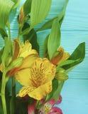 Kwitnie bukieta alstroemeria przygotowania kwitnącego piękno dekoracyjnego na koloru drewnianym tle, rama Obrazy Royalty Free