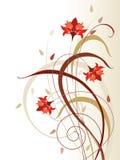 kwitnie czerwień Obrazy Royalty Free