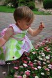 kwitnie dziewczyny małej Fotografia Stock