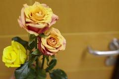 Kwitnie gdy odwiedzający szpital Zdjęcia Royalty Free