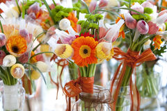 kwitnie gerbera pomarańcze Zdjęcia Royalty Free