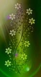 Kwitnie ilustrację na colourful tle Zdjęcia Royalty Free
