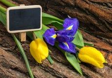 Kwitnie irysa i tulipany z wodnymi kroplami na drewnianym tle Obrazy Royalty Free