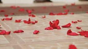 Kwitnie płatki na podłoga przy ślubną ceremonią zbiory wideo