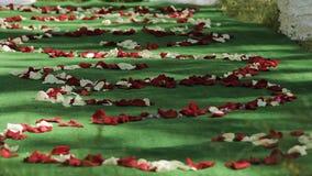 Kwitnie płatki na podłoga przy ślubną ceremonią zbiory