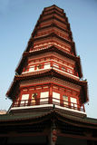 Kwitnie pagodę świątynia Sześć Banyan drzew Obraz Royalty Free