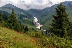 Kwitnie polanę i śnieżną lawinę w górach przeciw tłu niskie chmury Obraz Stock