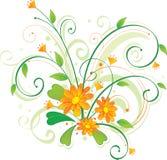 kwitnie pomarańcze Zdjęcia Stock