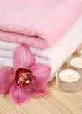 kwitnie ręcznika Zdjęcia Stock