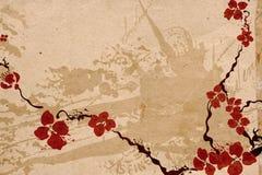 kwitnie Sakura Zdjęcie Royalty Free