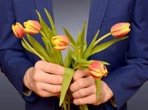 Kwitnie tulipany w rękach mężczyzna Zdjęcie Stock