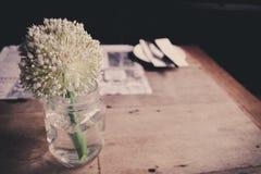 Kwitnie w szklanej wazie na drewnianym łomotanie stole Obraz Stock