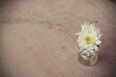 Kwitnie w wazie na drewnianym tekstury tle w sklep z kawą dowcipie Zdjęcia Stock