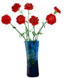 kwitnie wazę Fotografia Stock