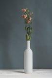 kwitnie wazowego biel Zdjęcia Royalty Free