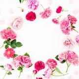 Kwitnie wokoło ramy różowe róże i anemon, peonia kwiaty na białym tle Mieszkanie nieatutowy, odgórny widok Pastel kwitnie tekstur obraz stock