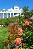 kwitnie wyspę Zdjęcia Royalty Free
