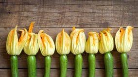 kwitnie zucchini Obrazy Stock
