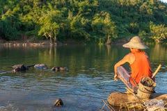KYAUKME, MYANMAR - Dec 2, 2014: Unidentified. KYAUKME, MYANMAR - Dec 2, 2014: Unidentified burmese man shepherding buffalos in the river near Kyaukme town in royalty free stock photography