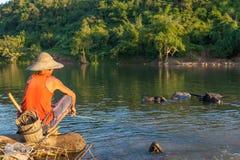 KYAUKME, MYANMAR - Dec 2, 2014: Unidentified. KYAUKME, MYANMAR - Dec 2, 2014: Unidentified burmese man shepherding buffalos in the river near Kyaukme town in royalty free stock photo
