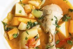 Kycklinggryta med grönsaker Royaltyfri Bild