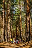 Teenagers Among the Pines. Kyiliv, Kyiv region, Ukraine - 08 09 2017: A group of young people teenagers in a pine forest play rest are competing vertical Royalty Free Stock Photo