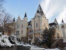 Kyiv学术木偶剧院冬天 库存图片