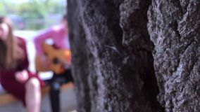 KYIV, ΟΥΚΡΑΝΊΑ - 21 ΑΠΡΙΛΊΟΥ 2019: Άποψη από πίσω από ένα δέντρο σε μια ομάδα νέων στο defocus που παίζουν την κιθάρα και φιλμ μικρού μήκους