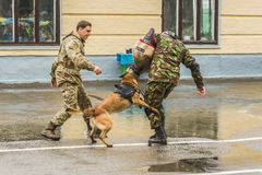 KYIV, ΟΥΚΡΑΝΊΑ - 26 Μαΐου 2017: Τελετή επ' ευκαιρία του τέλους του ακαδημαϊκού έτους στο στρατιωτικό λύκειο του Κίεβου του Ivan B Στοκ Φωτογραφίες