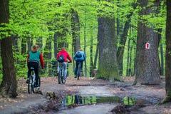 Kyiv, Ουκρανία, 16 04 2016 Ομάδα ερασιτεχνικών ποδηλατών που οδηγούν στο τ Στοκ Εικόνες