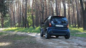 KYIV, УКРАИНА - июнь 2017: Умный автомобиль в сигнале тревоги леса дальше сток-видео