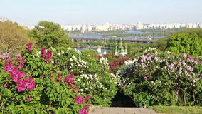 Kyiv Botanical Garden in spring, Ukraine stock footage