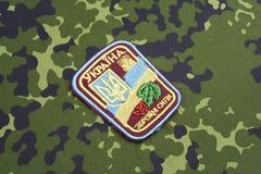 KYIV, UCRÂNIA - julho, 16, 2015 Crachá do uniforme do exército de Ucrânia Foto de Stock Royalty Free