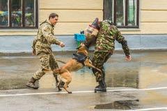 KYIV, UCRAINA - 26 maggio 2017: Cerimonia in occasione dell'estremità dell'anno accademico nel liceo militare di Kiev di Ivan Boh Fotografie Stock