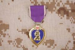 KYIV UKRAINA, Sierpień, - 23, 2016 Purple Heart nagroda na USA żołnierzy piechoty morskiej kamuflażu mundurze obraz royalty free