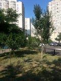 Kyiv. Ukraine Royalty Free Stock Images