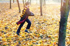 Cute boy in glasses stands in autumn park with gold leaves, holds book in his hands, royalty free stock images