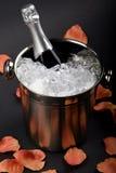 kyld champagne Royaltyfri Foto