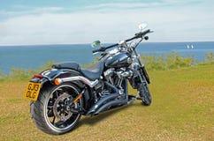 Kyld Harley davidson 103 tvilling- kamluft Arkivfoto