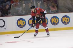 Kyle Turris of the Ottaw Senators. Kyle Turris, assistant captain, of the Ottawa Senators skates on the ice with the puck against the National Hockey Leagues Stock Image