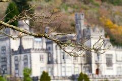 Kylemore Abbey Royaltyfri Fotografi