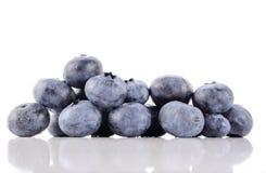 kyliga blåbär Arkivbild