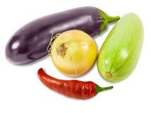 Kyliga grönsakmärg, lök, aubergine och peppar Royaltyfria Foton