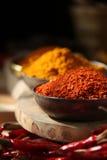 kyliga indiska röda kryddor Fotografering för Bildbyråer