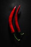 Kyliga röda peppar Arkivfoton