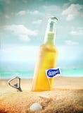 Kylt frukt- sodavatten eller öl på stranden arkivbilder
