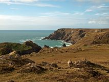 Kynance Cove Cornwall. Kynance Cove on the Lizard peninsular in south west Cornwall Stock Photos